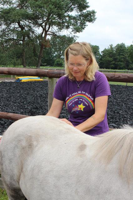 Pferdebehandlung