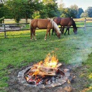 Lagerfeuer mit Pferden